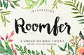 Illustration of font Roomfer