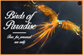 Illustration of font Birds of Paradise  Personal use