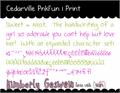 Illustration of font Cedarville Pnkfun 1 Print