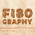 Illustration of font Fibography Personal Use