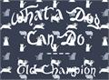 Illustration of font Old Champion