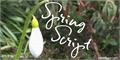 Illustration of font Spring Script