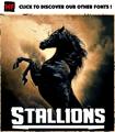 Thumbnail for Stallions