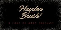 Sample image of Haydon Brush PERSONAL USE font by Måns Grebäck