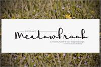 Sample image of Meadowbrook font by Brittney Murphy Design