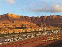 Sample image of ArizonaTumbleweed font by Shara Weber