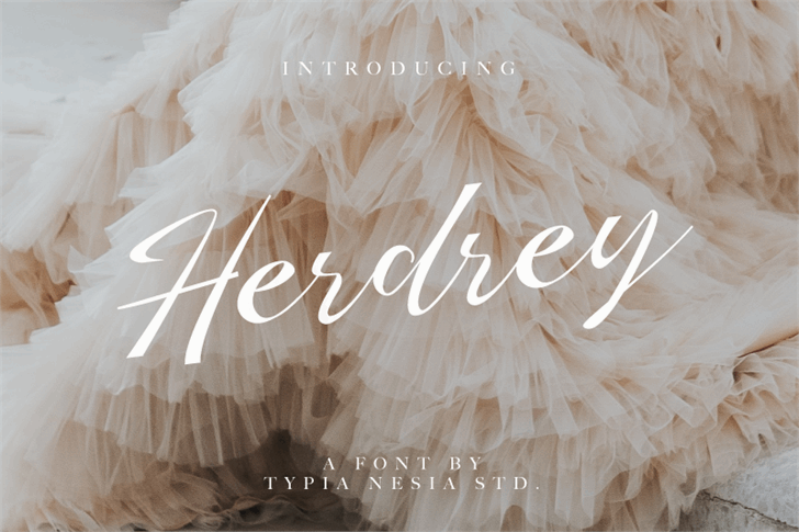 Herdrey font by Typia Nesia
