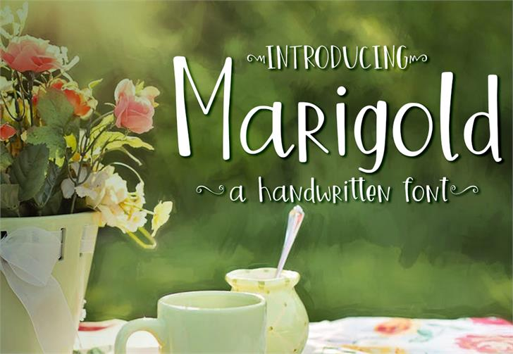 Marigold font by GroovyJournal