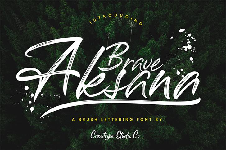 Aksana font by Creatype Studio