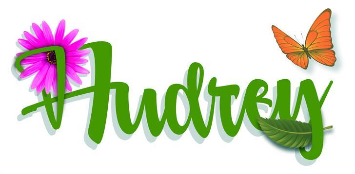 Audrey font by VVB DESIGNS