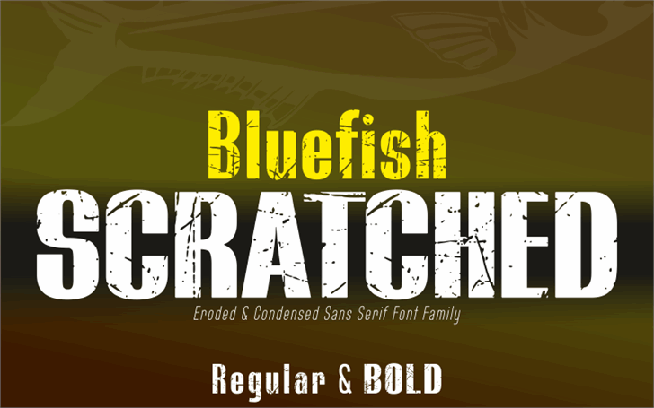 BLUEFISH SCRATCHED Demo font by studiotypo