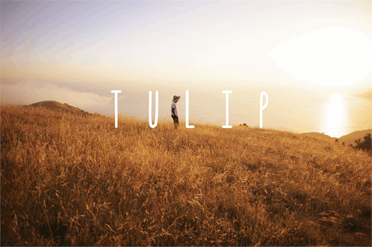 Image for Tulip font