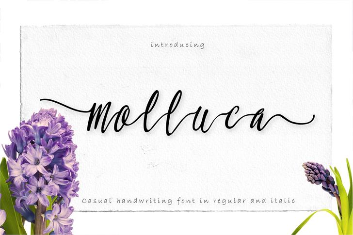 Molluca font by Greataris