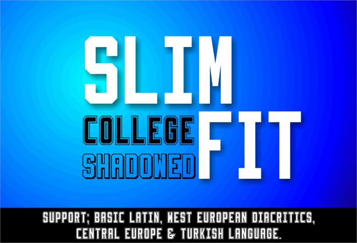 Image for Slimfit font