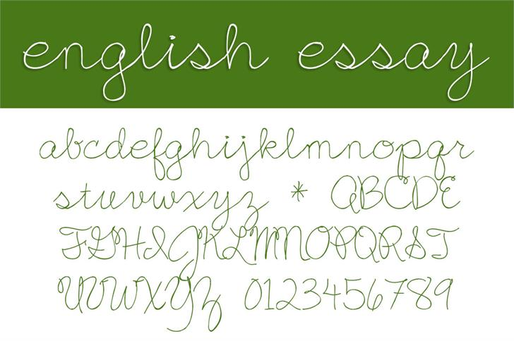 English essay font