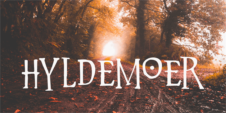 Hyldemoer DEMO font by David Kerkhoff