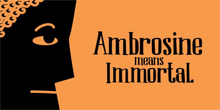 Image for DK Ambrosine font