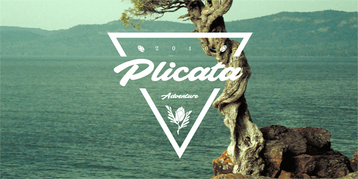 Image for Plicata PERSONAL USE ONLY font