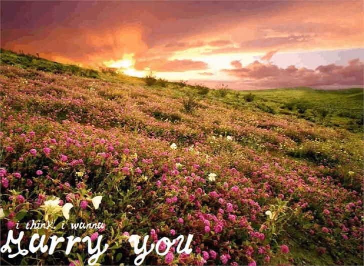 Image for MarryYou font