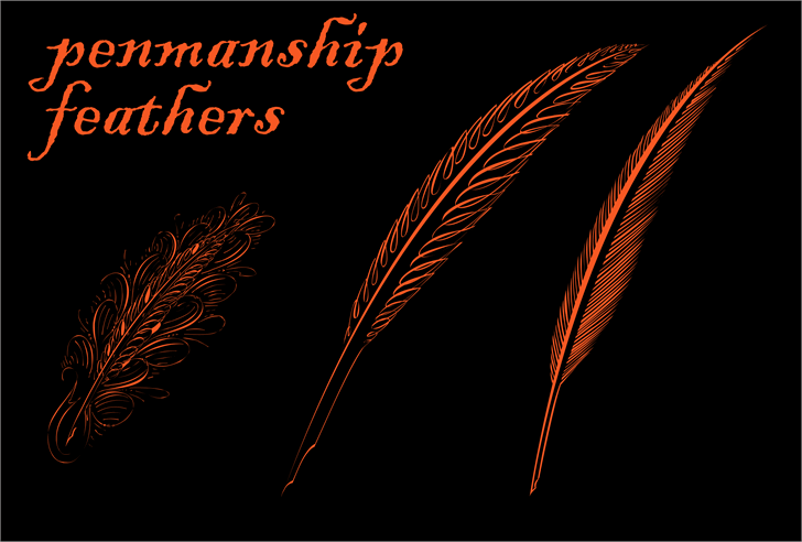Image for Penmanship Feathers font