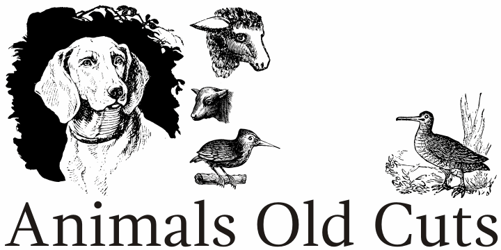 Image for Animals Old Cuts font