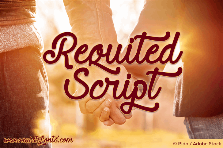 Requited Script Demo font by Misti's Fonts