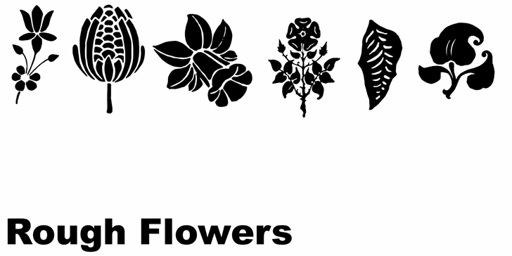 Rough Flowers font by Intellecta Design