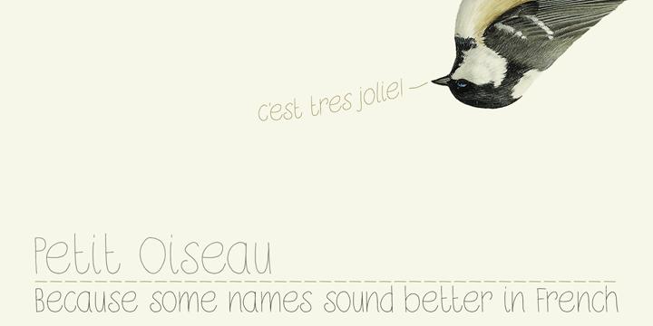 Image for DK Petit Oiseau font
