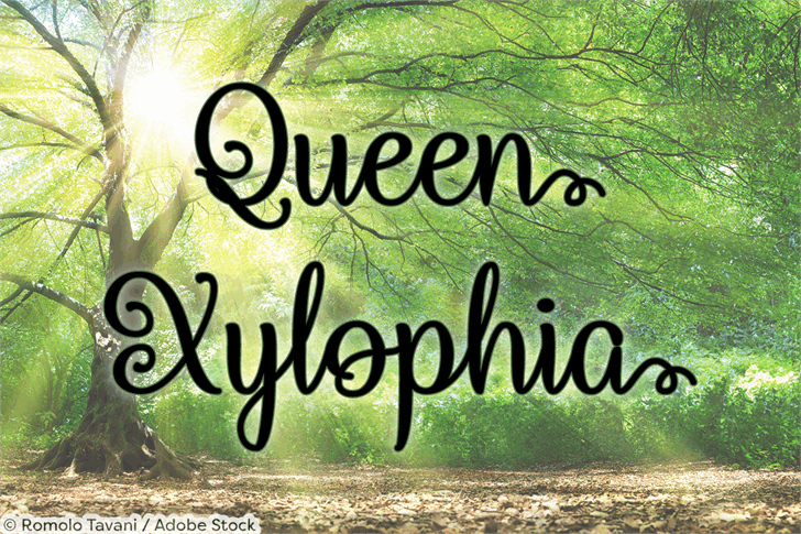 Queen Xylophia font by Misti's Fonts