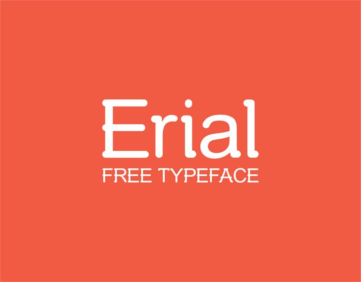 Image for Erial font