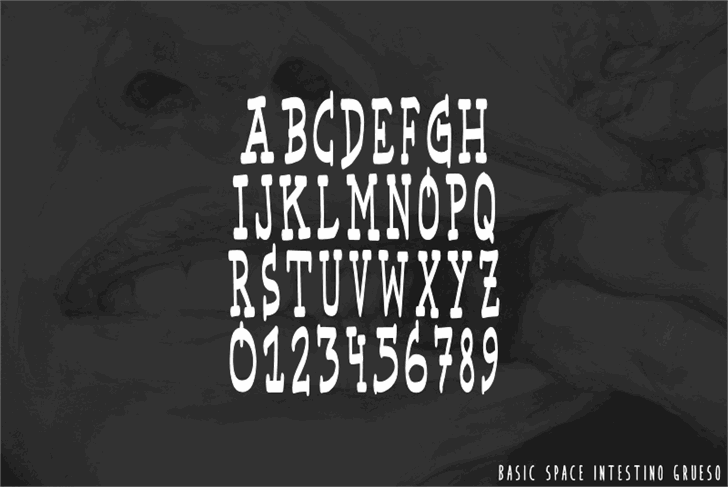Basic Space font by IntestinoGrueso