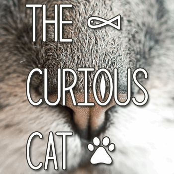 Image for The Curious Cat font