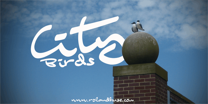 Image for City Birds font