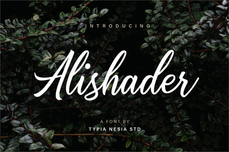 Image for Alishader Demo font