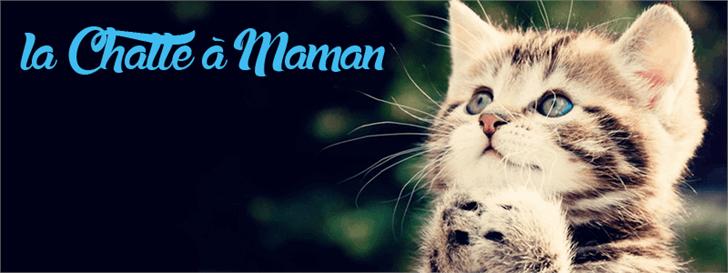 Image for la Chatte à Maman font