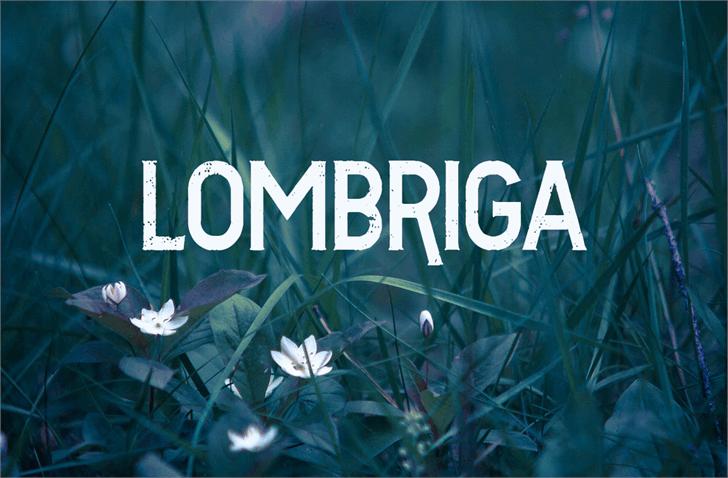 Image for Vtks Lombriga font