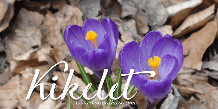 Image for Kikelet font