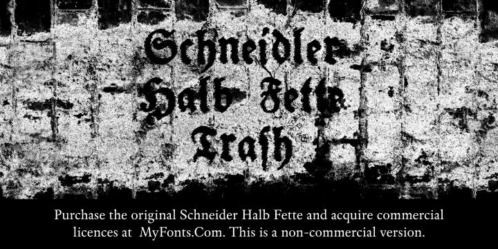 Image for Schneidler Halb Fette Trash font