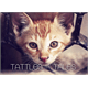 Thumbnail for Tattle & Tales