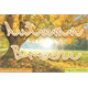 Thumbnail for Mf Autumn Breeze