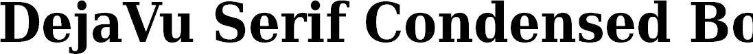 Preview image for DejaVu Serif Condensed Bold