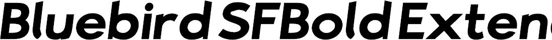 Preview image for Bluebird SFBold Extended Oblique