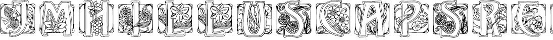 Preview image for JMHIllusCaps-Regular