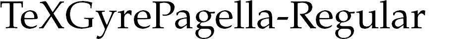 Preview image for TeXGyrePagella-Regular