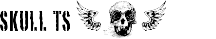 Preview image for SKULL TS 2