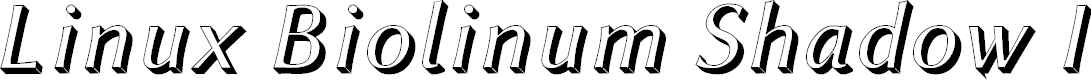 Preview image for Linux Biolinum Shadow Italic