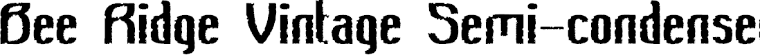 Preview image for Bee Ridge Vintage Semi-condensed Bold