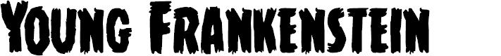 Preview image for Young Frankenstein Regular Font