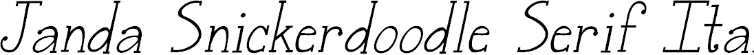 Preview image for Janda Snickerdoodle Serif Italic