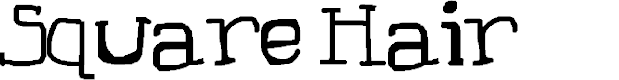 Preview image for Square Hair Font